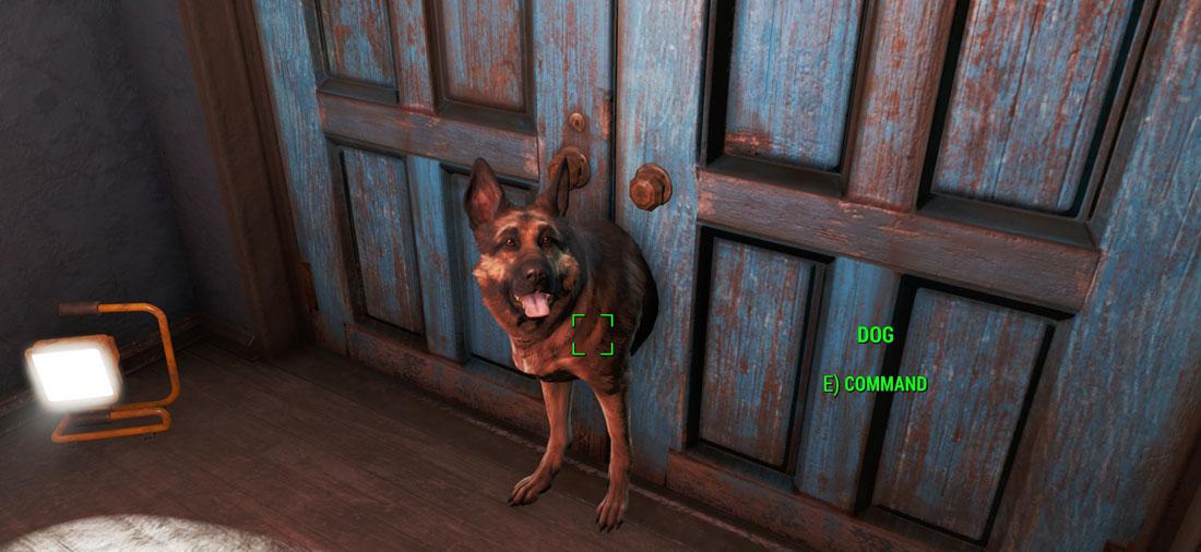 Баг в Fallout 4